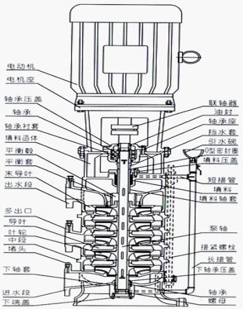 dl立式多级离心泵结构图及结构说明